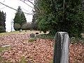 Bothell Pioneer Cemetery 16.jpg