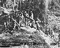 Bougainville USMC Photo No. 1-6 (21411827490).jpg
