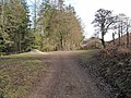 Bridleway to Cilcain - geograph.org.uk - 1171794.jpg