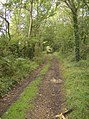 Bridleway towards Three Gates Farm - geograph.org.uk - 580270.jpg
