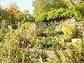"""Britzer Garten - Hexengarten (""""Witches' Garden"""") - geo.hlipp.de - 29282.jpg"""
