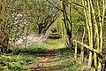 Bromham Nature Reserve (16497698994).jpg