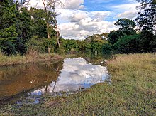 Brushy Creek Regional Trail - Halloween Flood - panoramio (1).jpg