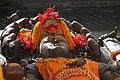 Budhanilkantha-Vishnu-25-gje.jpg