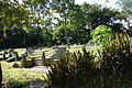 Bukit Brown Cemetery, Singapore - 20111210-01.JPG