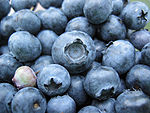Bunch of blueberries, one unripe.jpg