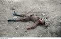 Bundesarchiv B 145 Bild-F016196-06, Rumänien, toter russischer Soldat Recolored.png