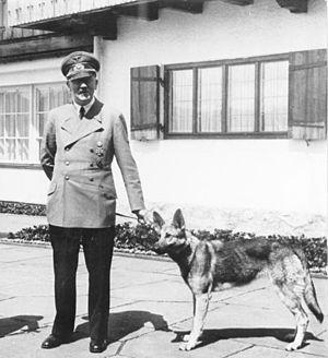 Blondi - Adolf Hitler holding Blondi on a leash.