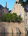 Burg Gemen Schwarze Maulbeere.jpg