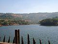 Bushy Dam.jpg