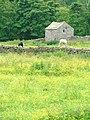 Buttercup Meadows - geograph.org.uk - 21794.jpg