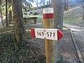 CAI 569 577 Tredozio Segnavia 2.jpg