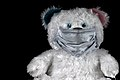 COVID 19 - Even teddy bears must be masked.jpg
