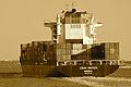 CSAV Rauten (ship, 2008) 002.jpg