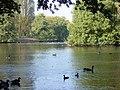 Calderstones Park Lake - geograph.org.uk - 96997.jpg