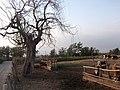 Camino Al Cristo. - panoramio (6).jpg