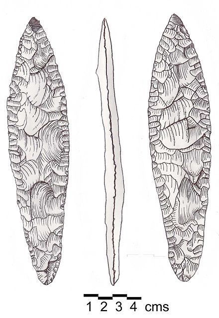 Canaanean Blade. Suggested to be part of a javelin. Fresh grey flint, both sides showing pressure flaking. Somewhat narrower at the base, suggesting a haft. Polished at the extreme point. Found on land of the Lebanese Evangelical School for Girls in the Patriarchate area of Beirut. Canaanean Blade.jpg