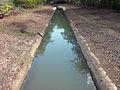 Canal de Riego, Cabo Rojo.jpg