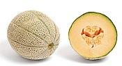 shades of orange - wikipedia