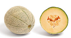 A cross section of a cantaloupe