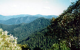 Careys Peak View.jpg