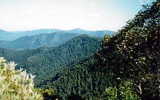 Careys Peak - View from Careys Peak