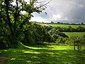 Castell Henllys - geograph.org.uk - 536532.jpg