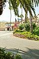 Catalina Island and Ensenada Cruise - panoramio (100).jpg