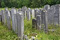 Cemetery Brody 03.jpg