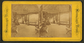 Central Park, Chicago, from Robert N. Dennis collection of stereoscopic views 2.png