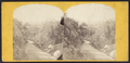 Central Park, in the Ramble, from Robert N. Dennis collection of stereoscopic views.png