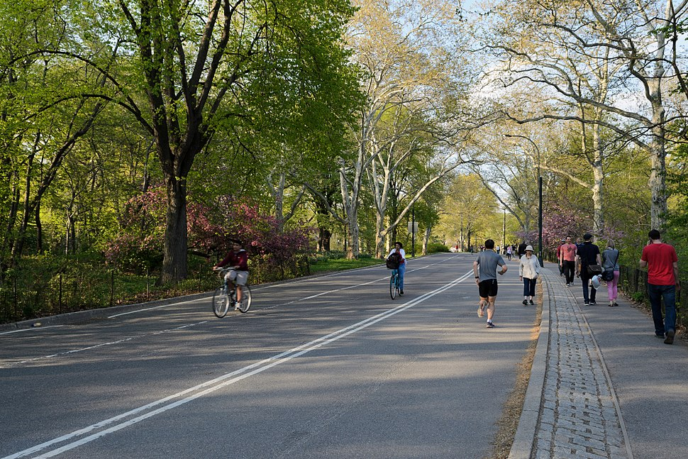 Central Park New York May 2015 005