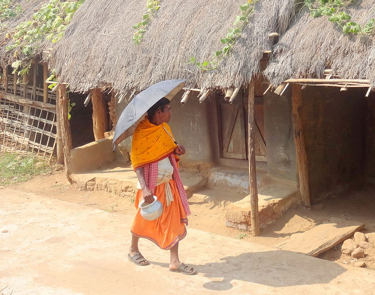 File:Chakulia panda walking at a village area in Odisha.JPG