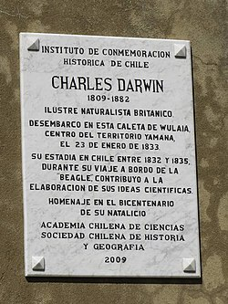 Photo of Charles Darwin marble plaque