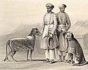 Cheetahs nawab oudh1844
