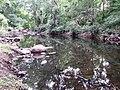 Chinnar River @ Chinnar Wildlife Sanctuary - panoramio (1).jpg