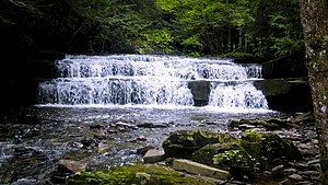 Christman Bird and Wildlife Sanctuary - Image: Christman Sanctuary, First Waterfall