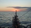 ChristmasSunset1.png