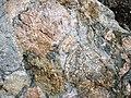 Clast-rich mixtite (Coleman Member, Gowganda Formation, Paleoproterozoic, ~2.3 Ga; Percival Lake roadcut, Ontario, Canada) 11 (47674005382).jpg