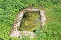 Clonard Monastic Site Trough 2007 08 26.jpg