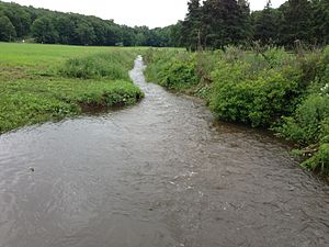 Coginchaug River at Guilford-Durham Line.jpg