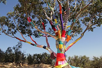 Stephen Duneier - 40 ft tall eucalyptus tree 2.6 miles up the Cold Spring Trail wrapped with yarn.
