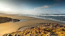 Combers-Beach.jpg