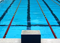 The starting block of a competition swimming pool; they were first used at the 1936 Summer Olympics.