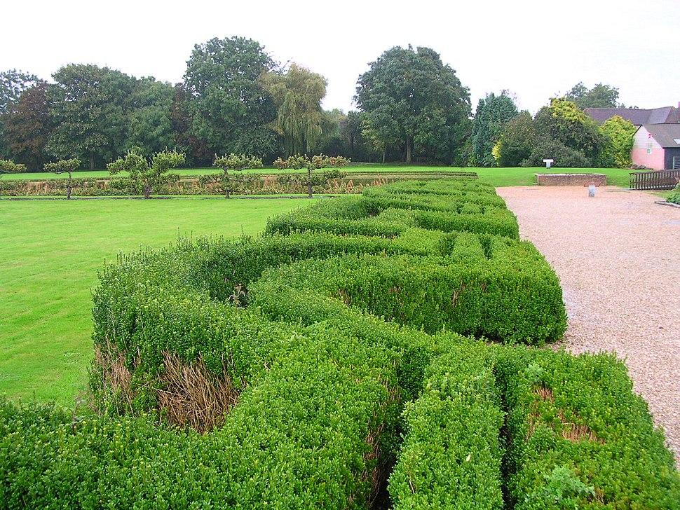 Complex box hedges