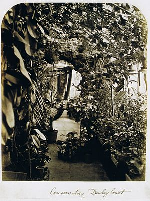 Conservatory (greenhouse) - An English conservatory, Dawley Court, near Hillingdon, Middlesex, photographed circa 1870