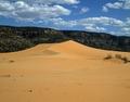 Coral Pink Sand Dunes State Park in Utah LCCN2011634573.tif