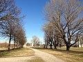 Corsico - Parco Travaglia.jpg