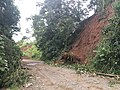 Costa Rica - Water erodes side of roadbank.jpg