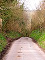 Country Road - geograph.org.uk - 361799.jpg
